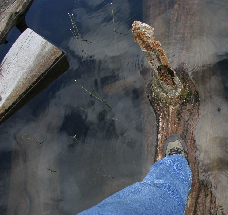 my left foot in some canadian stream